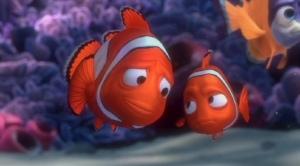 Procurando Nemo03
