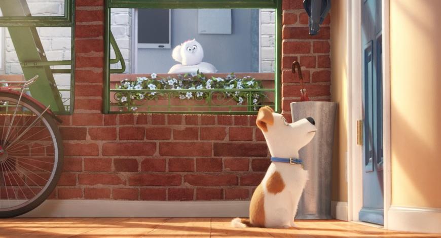 20160702-pets-papo-de-cinema-06